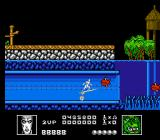 Silver Surfer NES Underwater passage and fish