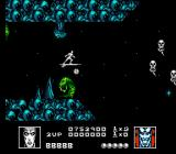 Silver Surfer NES A variety of strange creatures populate the Magick realm.