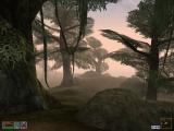 The Elder Scrolls III: Morrowind Windows A murky swamp is home to all kinds of creatures