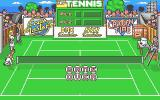 Pro Tennis Simulator Atari ST And that's the end of that chapter