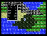 Dragon Warrior MSX Stepping on those fields gets you poisoned