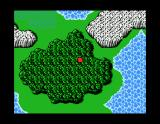 Final Fantasy MSX The trees must be really tall here. Only your head sticks out