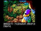 Dragon Knight MSX The adventurer observes Strawberry Land