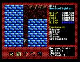 Xanadu: Dragon Slayer II MSX Falling down, falling down...