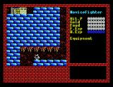 Xanadu: Dragon Slayer II MSX Hmm, how do I get there?..