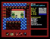 Xanadu: Dragon Slayer II MSX Shop in the middle of a dungeon