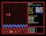 Xanadu: Dragon Slayer II MSX Treasure chest! How cool!