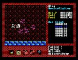 Xanadu: Dragon Slayer II MSX Fighting some bats
