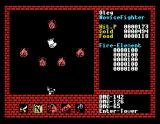 Xanadu: Dragon Slayer II MSX Fire elementals guard that scroll