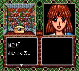Madō Monogatari II: Arle 16-sai Game Gear Found a treasure chest!