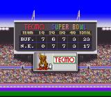 Tecmo Super Bowl SNES The game is over...