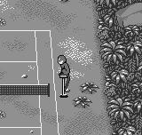 Pocket Tennis Neo Geo Pocket Jungle court overview – A intent monkey will be the referee here... :-D