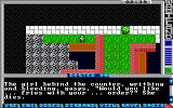 Wasteland DOS Testing the Howitzer... oops! (EGA)