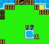 Dragon Warrior Monsters 2: Tara's Adventure  Game Boy Color And the important stuff happens in a giant tree.