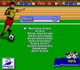 FIFA 98: Road to World Cup Game Boy Options during the match.