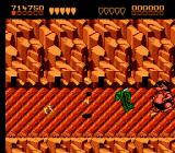 Battletoads NES Halfway (that's right-- halfway) through level 5 is a miniboss