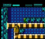 Battletoads NES Karnath's Lair, level 6-- negotiating the snakes