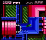 Battletoads NES Terra Tubes, level 9-- more public utility action, this time in the sewer
