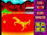 Buffalo Bill's Wild West Show ZX Spectrum Throwing me down