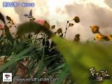 Shengnü zhi Ge: Heroine Anthem II - The Angel of Sarem Windows The first intro to the game
