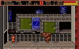 "Ninja Gaiden II: The Dark Sword of Chaos DOS fighting Dando ""the cursed"""