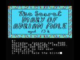 The Secret Diary of Adrian Mole Aged 13¾ MSX Title screen