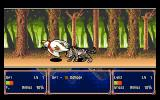 Farland Story: Shirogane no Tsubasa PC-98 Hey, leave the duck alone!
