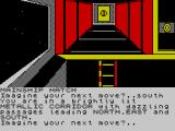Imagination ZX Spectrum Nice ladder