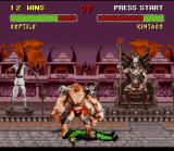 Mortal Kombat II SNES Reptile was caught by Kintaro's feet-stomping move and now is forced to feel the consequences...