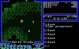 Ultima V: Warriors of Destiny Atari ST It's dark and kind of depressive