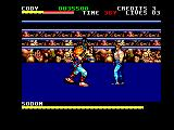 Final Fight Amstrad CPC In the ring