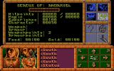 Dragonflight Atari ST Stats