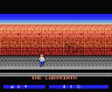 Labyrinth MSX The beginning of the game