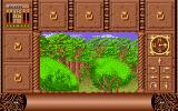 Fate: Gates of Dawn Atari ST So many trees