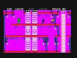 Bruce Lee PC Booter In the underground caves (CGA with composite monitor)