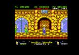 Double Dragon Amstrad CPC What's behind those blue doors