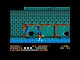 Bad Dudes Amstrad CPC Walking in the water