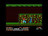 Bad Dudes Amstrad CPC Stage 4