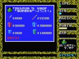 Hydlide II: Shine of Darkness MSX Buy some items in a shop.