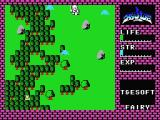 Hydlide MSX Fight off evil monsters.