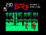 Double Dragon III: The Sacred Stones Amstrad CPC ...and lands in the swamp