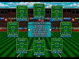 Ultimate Soccer Genesis There are plenty of tactics to choose from.