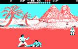 World Karate Championship DOS Blue player trying to knock down white