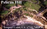 Links 386 Pro DOS Pelican Hill splash screen