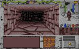Towers: Lord Baniff's Deceit Atari ST Long corridor