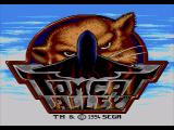 Tomcat Alley SEGA CD Title screen