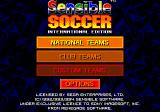 Championship Soccer '94 Genesis Choose the game type