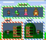 Yoshi's Cookie SNES VS mode:  Select your character