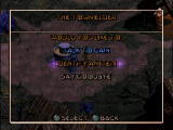 Diablo PlayStation Cain - the town elder - can identify magic items.