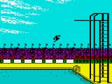 Gold, Silver, Bronze ZX Spectrum The diving game